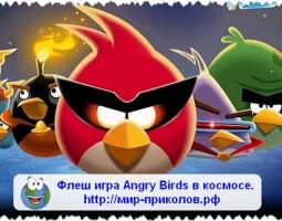 Игра Angry Birds в космосе.