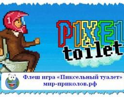 Игра  «Пиксельный туалет» (Pixel Toilet)