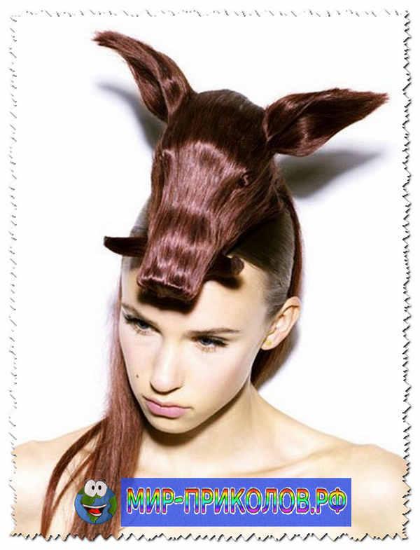 Прикольные-причёски-prikolnye-prichyoski-2