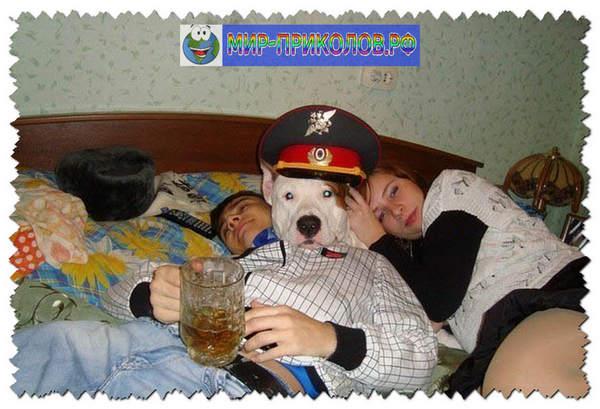 Фото-приколы-Показалось-foto-prikoly-pokazalos-3