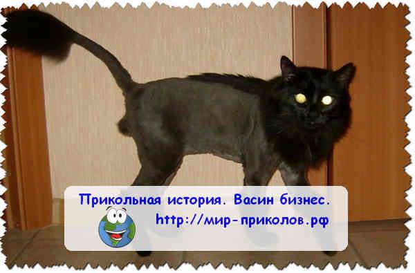 Прикольная-история-Васин-бизнес-prikolnaya-istoriya-vasin-biznes-3