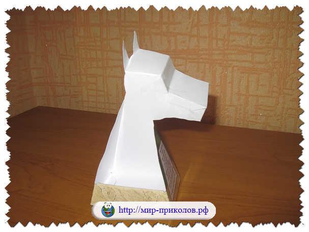 Оптические-3D-иллюзии-своими-руками-opticheskie-3d-illyuzii-svoimi-rukami-instrukciya-7