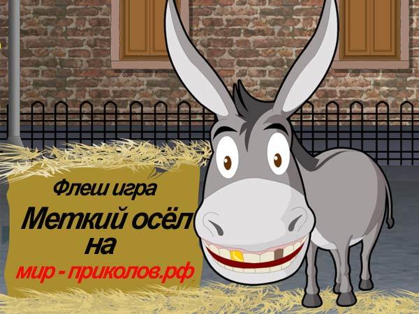 Флеш-игра-Меткий-осёл-Donkey-Gafoor